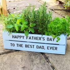 how to make a windowsill herb garden u0026 grow culinary herbs