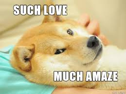 Shibe Doge Meme - list of synonyms and antonyms of the word love doge meme