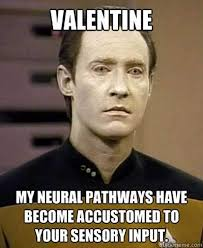 trek valentines what are some of the best s day memes updated quora
