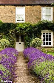 Low Maintenance Front Garden Ideas Maximum Minimum Fuss How To Create A Low Maintenance Front