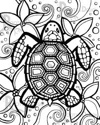 turtle coloring page free printable turtle coloring pages for kids