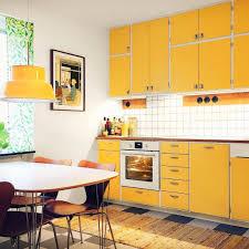Modern Kitchen Pantry Designs - kitchen cozy kitchen pantry design kitchen drawers u201a kitchen