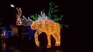 niagara falls christmas lights winter festival of lights in niagara falls canada picture of