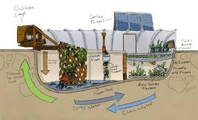 Best Backyards In The World Garden Pool Meetup Mesa Az Meetup