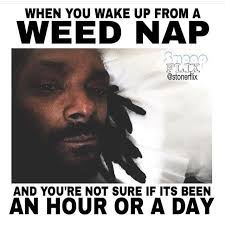 10 best funny marijuana memes of the week august 9 16