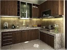 Small But Striking U Shaped Design Small Kitchen Pictures Impressive Design Inoochi