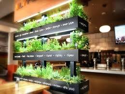 herb garden kitchen counter unwins herb kitchen garden window box