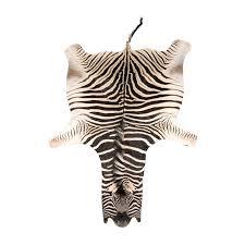 real zebra skin rug