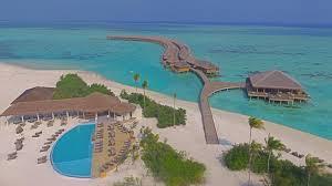 cocoon maldives leisure island holidays
