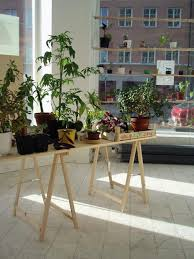 houseplant trellis diy instant hanging shelves for houseplants gardenista