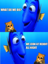 Dory Memes - what do we do we look at reddit all night dory quickmeme