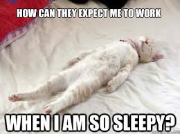 Meme Sleepy - so tired meme google search funny pinterest meme work