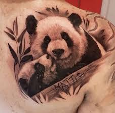 26 best panda japu images on pinterest draw beautiful pictures