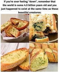 Garlic Bread Meme - some wholesome garlic bread memes rebrn com