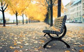 canada montreal park bench wallpaper