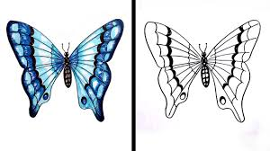 drawing of a butterfly drawings of flowers and butterflies my