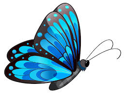 blue butterfly pictures free download clip art free clip art