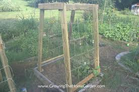 homemade cucumber or melon trellises growing the home garden