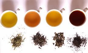 Teh Oolong kedai lokalti oksidasi pada teh hitam teh oolong teh hijau dan