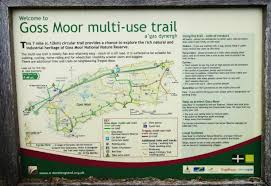 Map Running Route by Trail Running And Walking Cornwall Discover Cornwalls Best