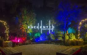 enchanted forest of light tickets lightswitch enchanted forest of lights at descanso gardens
