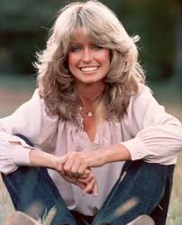 farrah fawcett hair cut instructions best 25 feathered hairstyles ideas on pinterest framed face
