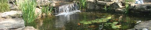 Aquascape Biofalls Ask An Expert U2013 Aquascapes