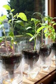 How To Make Self Watering Planters by Living True U2013 Model Blog Diy Self Watering Planters For Earth Day