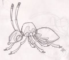 thunder ant animals drawings pictures drawings ideas for kids