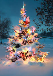 outdoor christmas tree 10 outdoor christmas tree decorations home design and