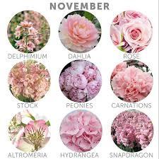 November Seasonal Flowers | flowers in bloom in may for wedding best 25 november wedding colors