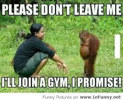 Funny Monkey Meme - funny monkey is upset