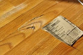 how to clean mold from a wood floor 4 steps