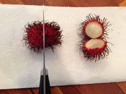 fruit similar to lychee fresh rambutan paddock post