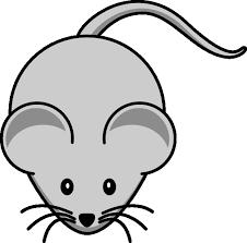 imagenes de ratones faciles para dibujar como dibujar ratones imagui