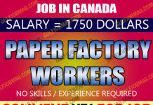 kfc pizza hut worker urgent in canada apply now new jobz