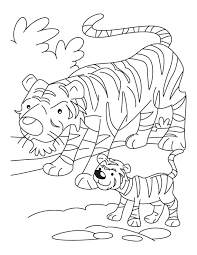 coloring pages tiger kids coloring