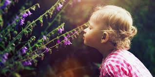 baby flowers 26 best flower baby names for and boys floral inspired