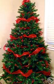 shocking collection decorated tree with ribbon picture