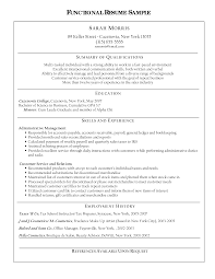 Functional Summary Resume Examples by Functional Freelance Makeup Artist Resume Templates And Summary Of