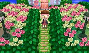 acnl shrubs 10 acnl tips that have helped me the most