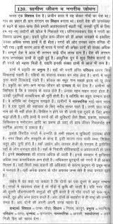 sample argumentative essay on education education system in india essay buy jihadist threat to book online freash essay essay on modern education system in hindi essay essay fresh essays essay on modern
