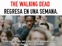 Walking Memes - memes de the walking dead home facebook