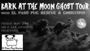 black friday el paso events u2014 el paso pug rescue