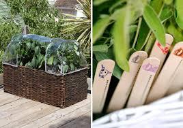 balcony gardening gardening forums