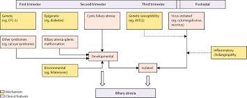 advances in paediatric gastroenterology the lancet