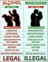 anti raucher spr che die besten 25 kiffen ideen auf gras rauchen unkraut