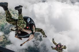 belgian shepherd quebec belgian shepherd jany parachutes with colombian anti terrorism