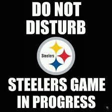 Pittsburgh Steelers Suck Memes - patriots suck memes