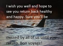 best 25 bon voyage message ideas on bon voyage